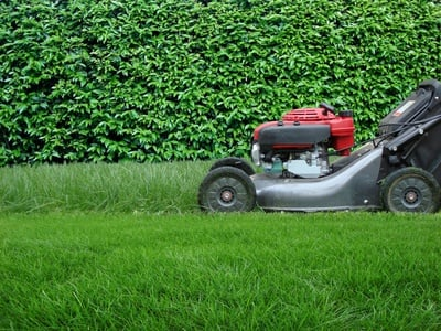 lawnmower-landlord-tenant-law-grass-cutting